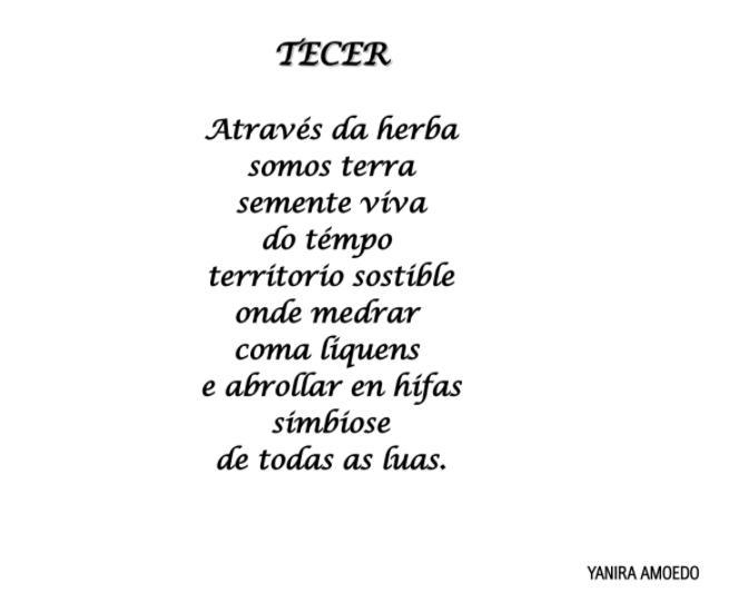 Tecer, Yanira Amoedo